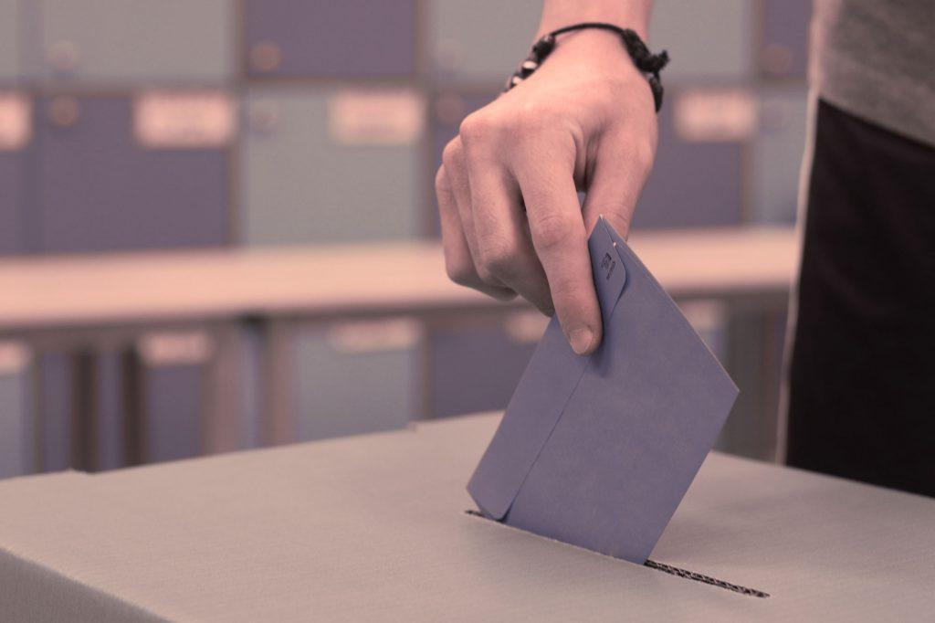 ACPA   Elecciones Consejo Escolar La Purísima